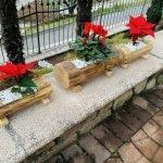fiorieria castagno
